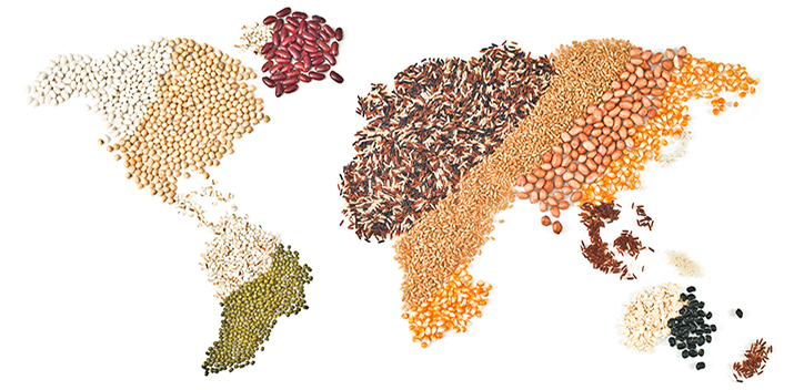 map of world in grains, lentils